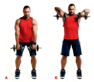 Home exercise complex with gantels on shoulders
